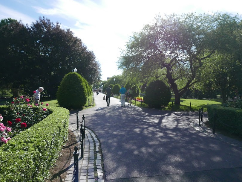 Boston Public Garden path